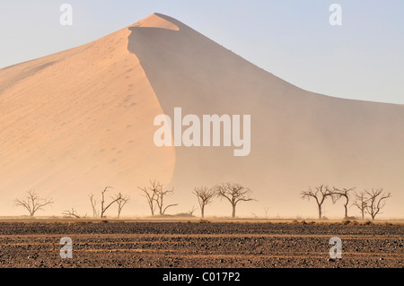 Sandsturm in der Namib-Wüste bei Sossusvlei, Namib Naukluft Park, Namibia, Afrika - Stockfoto