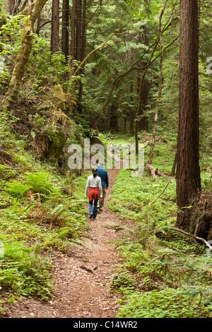 Paar Wandern auf Hasen Grove Trail im Kalkofen State Park in Big Sur, Kalifornien. - Stockfoto
