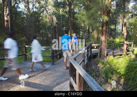 Menschen zu Fuß auf alten Reiches Promenade im Tal der Riesen, Walpole, Westaustralien, Australien - Stockfoto