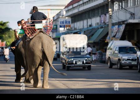 Elefant Taxis teilen sich die Straßen von Surin während des jährlichen Festivals der Elephant Roundup.  Surin, Surin, - Stockfoto