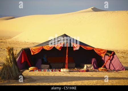 Afrika, Tunesien, Nefta, Sahara Wüste, Ong El Djemel, Berber Zelte, Berber Frau - Stockfoto
