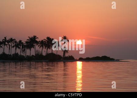 Sonnenaufgang über Insel der Palmen auf den Malediven - Stockfoto