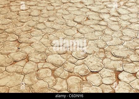 geplatzt getrocknete Salz in berühmten Deadvlei, Wüstenlandschaft der Namib am Sossusvlei, Namib-Naukluft-Nationalpark, - Stockfoto