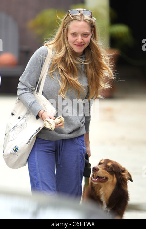 "Briefe an Julia ""star Amanda Seyfried, tragen kein Make-up lässt ihr Fitness-Studio West Hollywood mit ihrem Hund - Stockfoto"