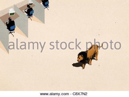 Lion Bürozellen vorbeigehen - Stockfoto