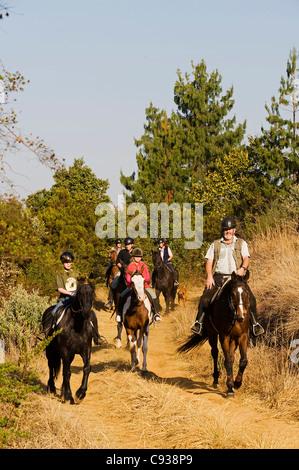 Malawi, Zomba Plateau.  Reiten ist ein beliebter Weg, um das Plateau auf geführte Touren von Plateau Ställe zu erkunden. - Stockfoto