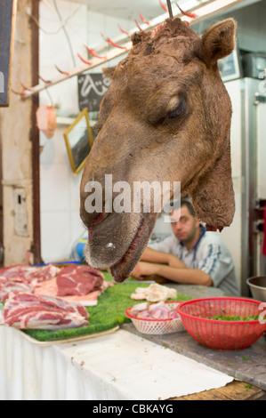 Camels Kopf hängen vor ein Geschäft mit Kamelfleisch in der Medina, Fes, Marokko - Stockfoto