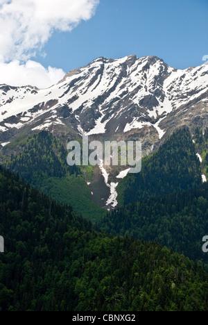 Landschaft mit Wald bedeckten Berg im Vordergrund und Berg-Gipfel mit Schnee und blauer Himmel im Hintergrund - Stockfoto