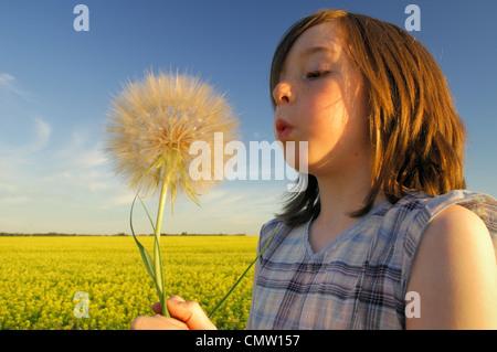 Porträt eines jungen Mädchens mit einem riesigen Löwenzahn mit Raps Feld im Hintergrund, in der Nähe von Devon, - Stockfoto