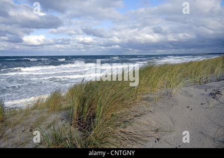 Blick über eine Düne auf das offene Meer, Deutschland, Mecklenburg Vorpommern, Western Region Nationalpark Vorpommersche - Stockfoto