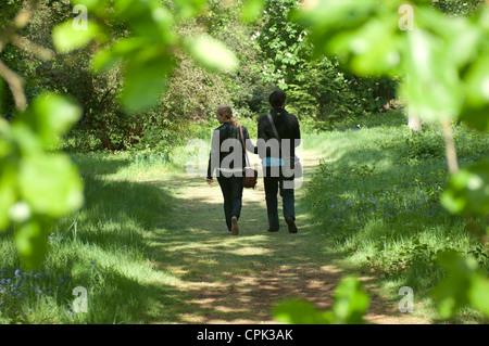 Besucher im Gewächshaus, Kew Gardens, London, GB. - Stockfoto