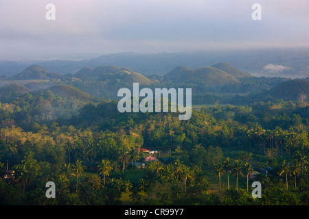 Chocolate Hills im Morgennebel, Bohol Island, Philippinen - Stockfoto