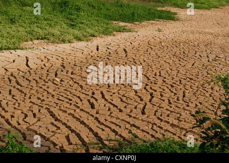 Boden Risse während der trockenen Jahreszeit an Land in Kerala, Indien - Stockfoto