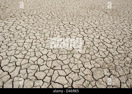 Chemische cracken Lehmboden See bed Muster. Andhra Pradesh, Indien - Stockfoto