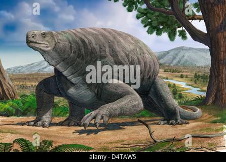 Cotylorhynchus Bransoni, eines prähistorischen Tieres aus dem Paläozoikum. - Stockfoto