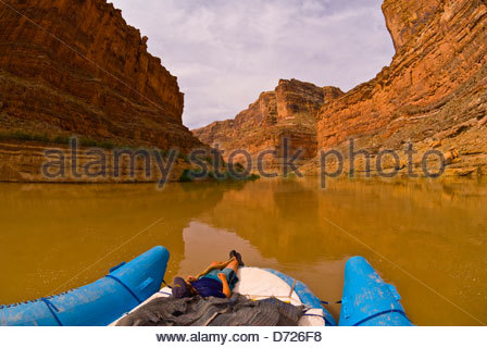 Bucht-Canyon, Colorado River, Glen Canyon National Recreation Area, Utah, USA - Stockfoto