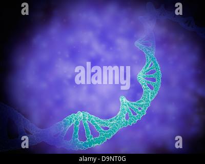 Stilisierte Ansicht von Stränge der menschlichen DNA oder Desoxyribonukleinsäure. - Stockfoto