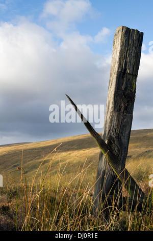 Low Angle View der Verfallenen und verrottendes Holz- zaunpfosten aus Eisenbahnschwellen, Cowgill, Dent Dorf im - Stockfoto
