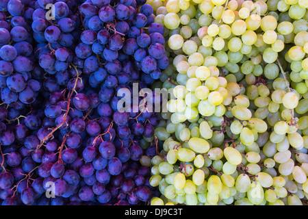 Bunt gemischte Trauben Hintergrund - Stockfoto