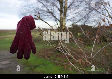 Verlorenen Handschuh - Stockfoto