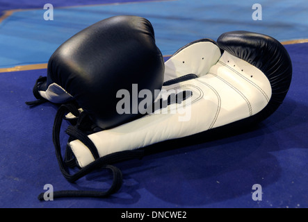 WBO-2013 (World Boxing Organization) in Le Cannet (Südost-Frankreich) 2013/01/12 - Stockfoto
