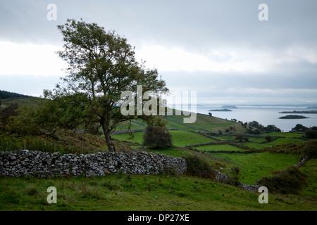 Landschaft im ländlichen Raum geteilt durch Trockenmauern und Aussicht auf Lough Corrib, in der Nähe von Cornamona, - Stockfoto