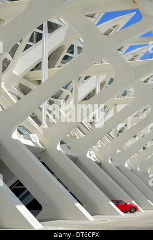 Spanien, Valencia, La Ciudad de las Artes y las Ciencias, die Stadt der Künste und Wissenschaften, Principe Felipe - Stockfoto
