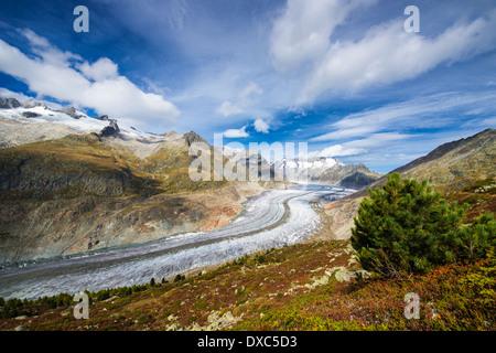 Grossen Aletschgletschers, Valais, Schweizer Alpen, Schweiz, Europa - Stockfoto