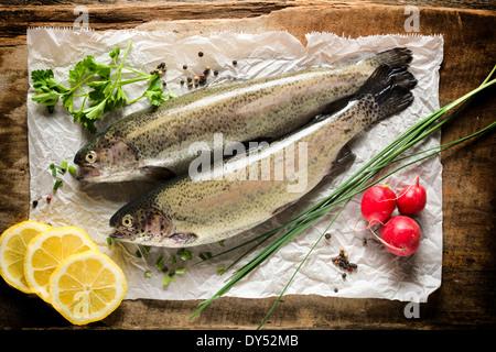 Rohe Makrele Fisch auf dem Papier von oben - Stockfoto