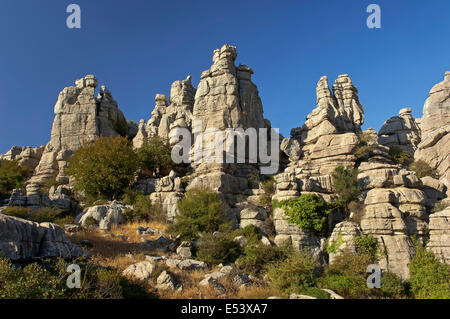 Torcal de Antequera Natural Park, Antequera, Malaga-Provinz, Region von Andalusien, Spanien, Europa - Stockfoto