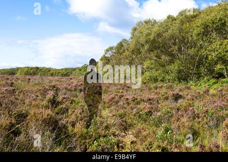 Leben Größe reflektierende Installation von Rob Mulholland am Taynish National Nature Reserve, Knapdale, Argyll - Stockfoto