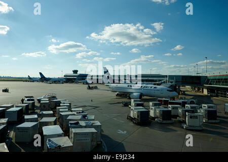 WestJet Flugzeuge an terminal 3 Toronto Pearson internationaler Flughafen Kanada - Stockfoto