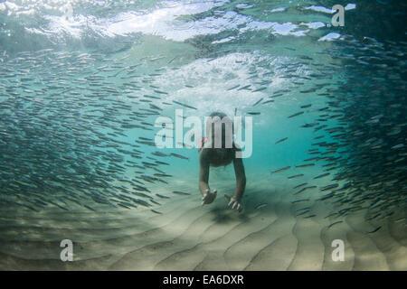 Unterwasser Aufnahme des Jungen schwimmen mit Fischschwarm - Stockfoto