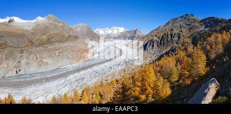 Aletsch Gletscher, Schweiz - Stockfoto