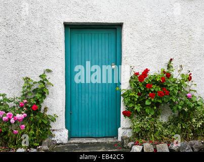Vintage Aquablau Tür Hauseingang und Rosenbusch In einem Garten in Irland, Europa - Stockfoto