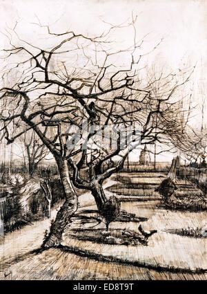 Vincent Van Gogh, der Pfarrhaus-Garten von Nuenen im Winter 1884 Feder und braune Tinte auf Papier. Museum of Fine - Stockfoto