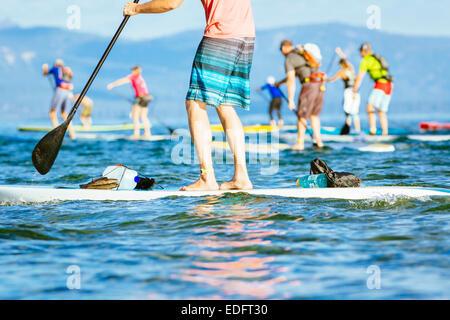 Viele Menschen sind auf Stand up Boards in einem Rennen paddeln. - Stockfoto