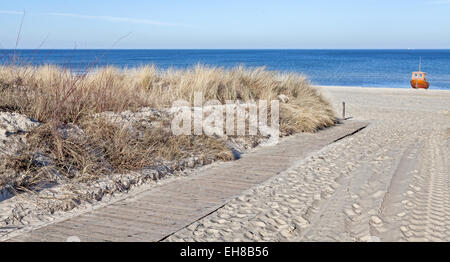 Panoramaaufnahme der Pfad an einem Strand. - Stockfoto