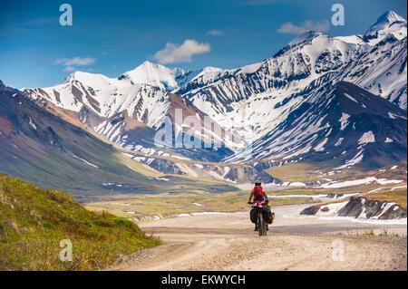 Eine Frau-Radwandern im Denali-Nationalpark, Grassy Pass, Yunan Alaska - Stockfoto