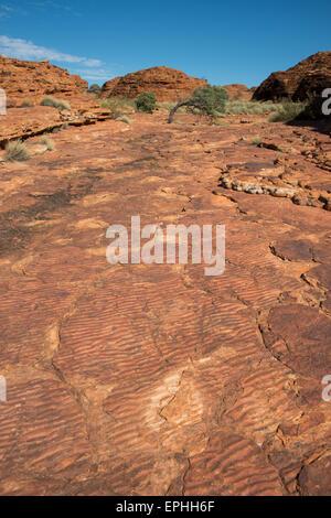 Australien, NT, Watarrka National Park. Kings Canyon, Rim Walk. Urzeitlichen Meeres Wellen, Beweise in Stein der - Stockfoto