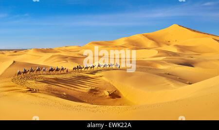 Kamel-Karawane, Erg Chebbi Wüste bei Merzouga, Sahara, Marokko - Stockfoto
