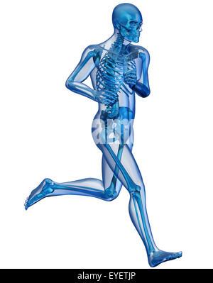 Seitenansicht eines laufenden Mannes gesehen auf Röntgenbild - Stockfoto