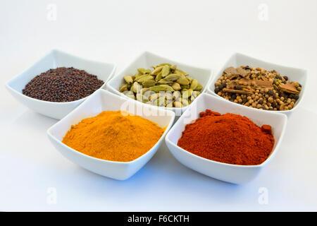 Eine Auswahl an Curry-Gewürze (Senf, Cardomom, Garam Masala, Kurkuma, Paprika) in Schalen vor einem weißen Hintergrund - Stockfoto