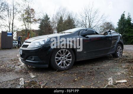 Sturm-Barney. Parkende Autos zerquetscht von einem fallenden Baum in Oxford, Großbritannien - Stockfoto