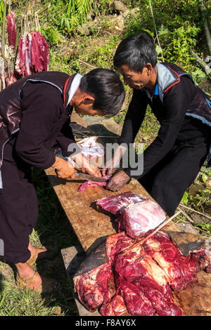Hmong Männer zerstückeln eine Steuern während einer Trauerfeier in das Dorf von Ri Sa in Lao Cai Provinz, Vietnam. - Stockfoto