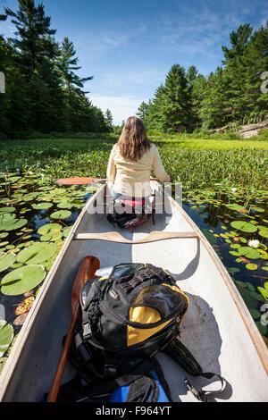 Frau im Bug des Kanus unter den Seerosen und Hecht Unkraut am Fluss Murdock in der Nähe von Killarney, Ontario, - Stockfoto
