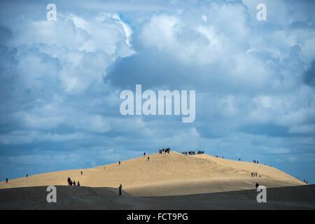 La Teste-de-Buch (Südwest Frankreich): Wanderer auf der Düne von Pilat (oder Pyla). - Stockfoto