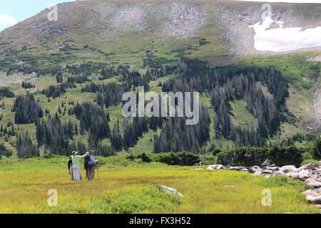 Statt in die Landschaft in Rawah Wilderness Area mit dem Berggipfel in der Ferne in Sicht. - Stockfoto