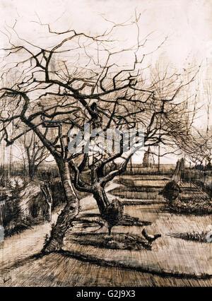 Vincent Van Gogh - der Pfarrhaus-Garten von Nuenen in Winter - Museum of Fine Arts, Budapest - Stockfoto