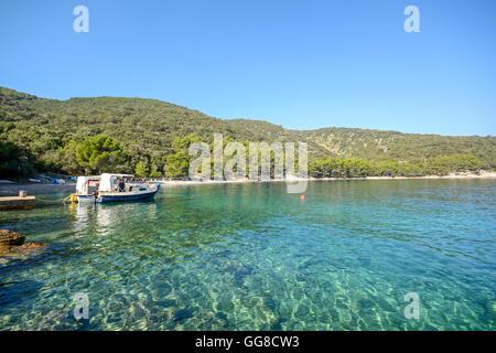 Insel Cres: Strand in der Nähe von Valun Dorf, istrischen Küste an der Adria, Kroatien Europa - Stockfoto
